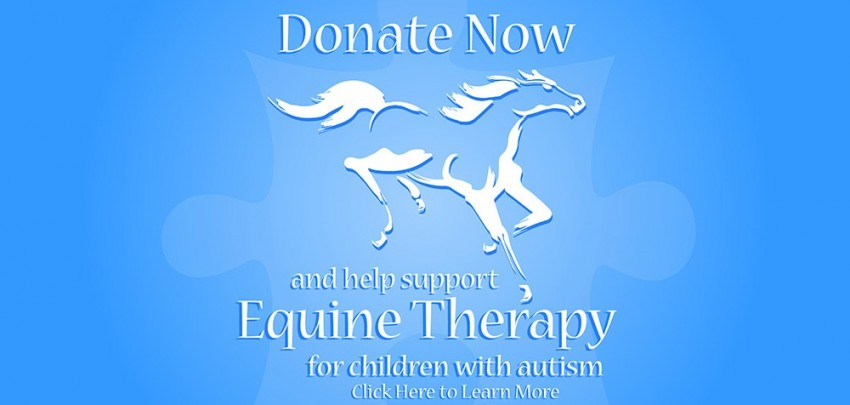 Autism Equine Therapy